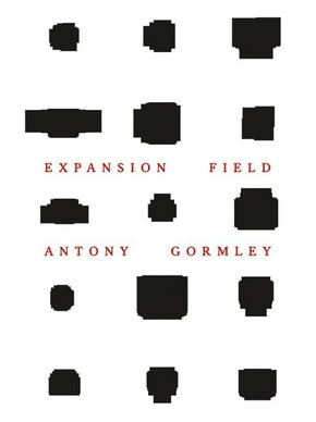 Antony Gormley - Expansion Field